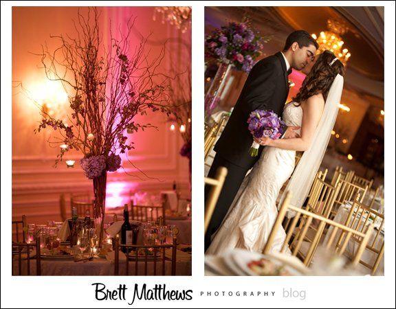 BrettMatthewsPhotographyAmato5