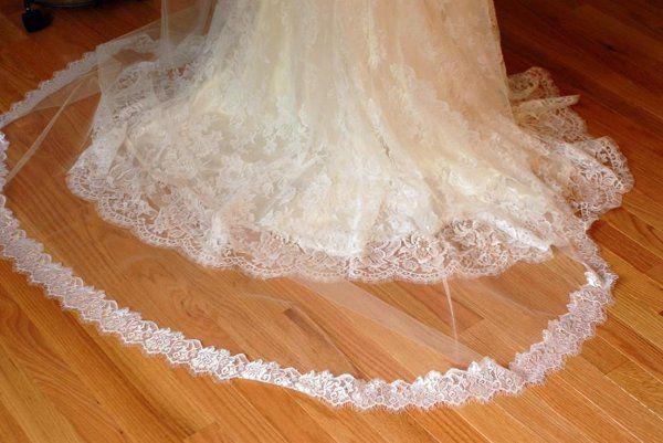 The veil - Tina Marie Photography