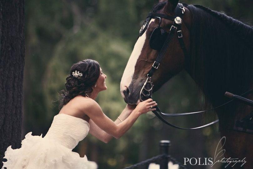 Polis Photography