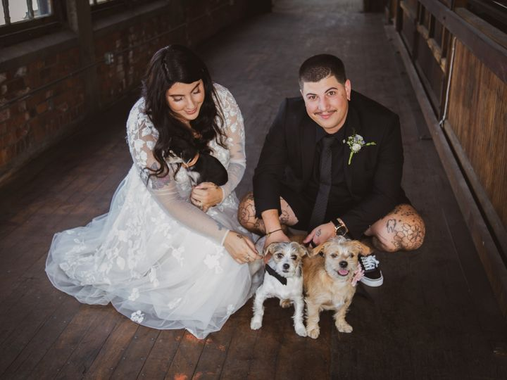 Tmx Couple And Their Dogs 2 51 1948795 158378703081334 Pawtucket, RI wedding venue