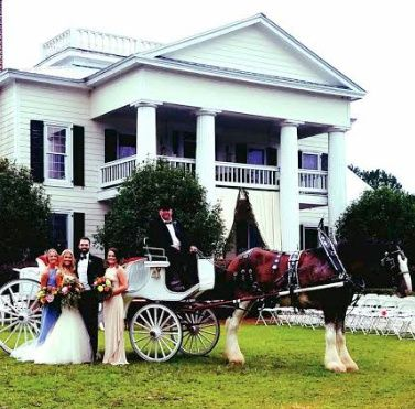 Historic White Oaks Wedding