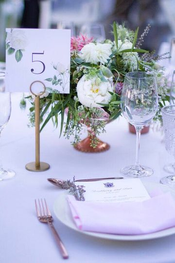 Save The Date! Weddings & Events | Cathy Stancil Photography