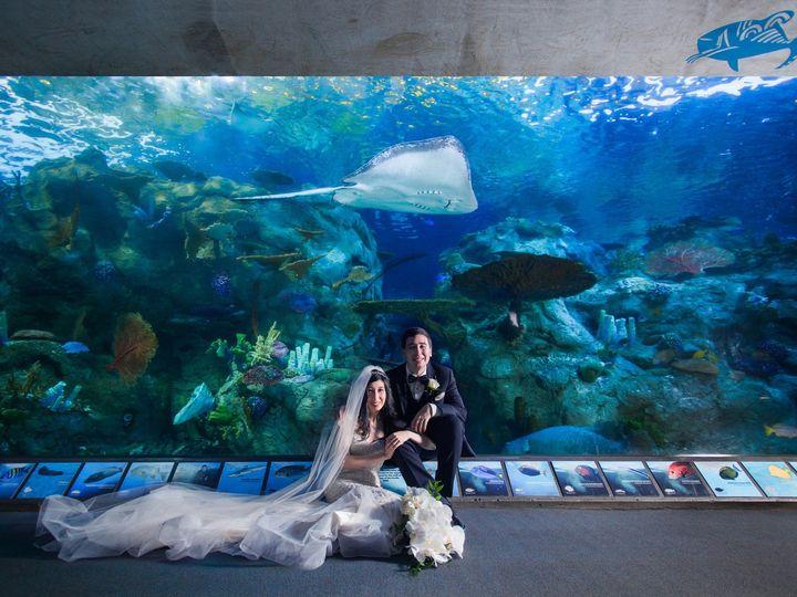 Tmx Long Beach Aquarium Wedding 8297 2100 51 409895 1571852532 Monterey Park, CA wedding photography