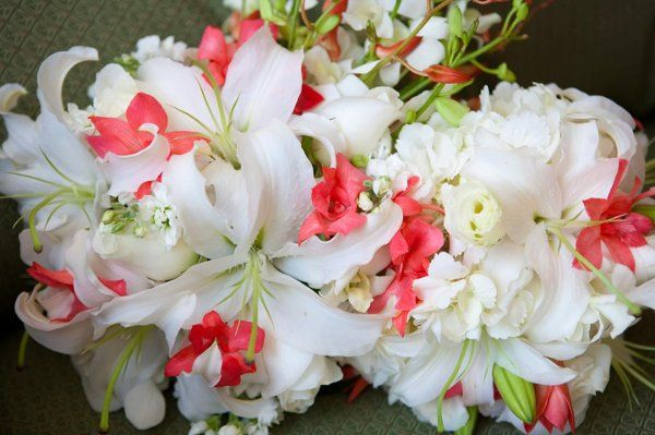 Tmx 1291841427955 Marsha1 Saint Petersburg wedding florist