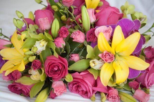 Tmx 1291841435939 Marsha2 Saint Petersburg wedding florist