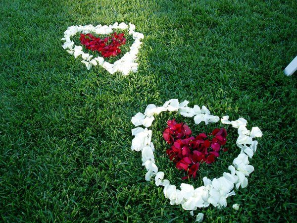 Tmx 1255642658026 Rosepetalshearts Van Nuys, CA wedding florist