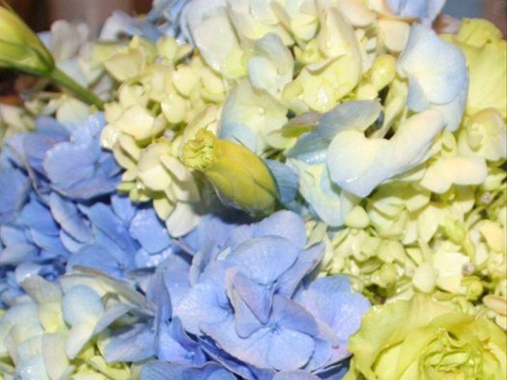 Tmx 1265036939906 STRACKPictures007 Denville, NJ wedding florist