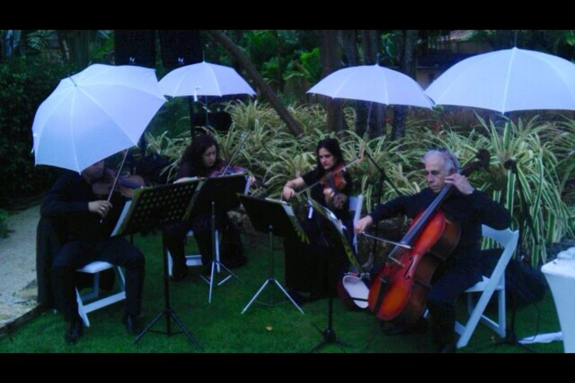strings quartet outdoo