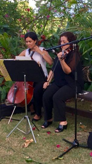 viollin cello hsa