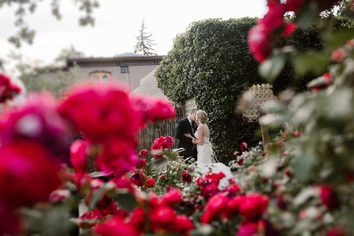 Blue Rose Photography Studio