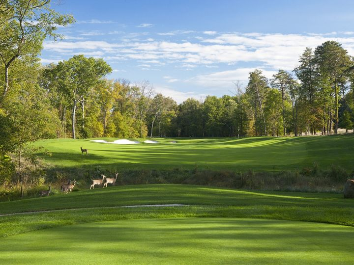 Tmx 1490018965403 Norman Course Hole 11 Deer Leesburg, VA wedding venue