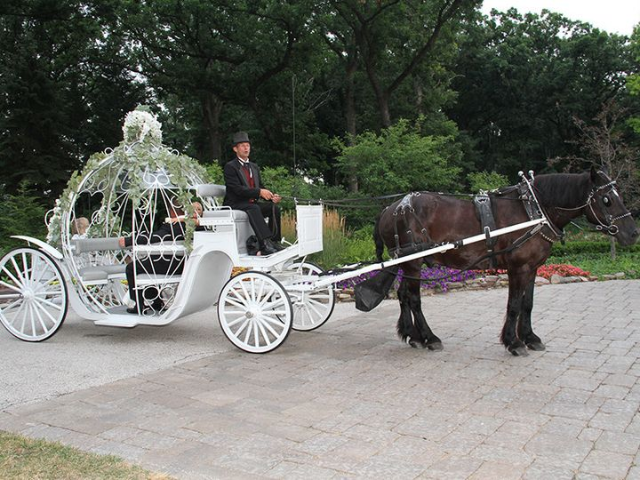 Tmx 1375396893418 Img8597a Chicago, IL wedding officiant