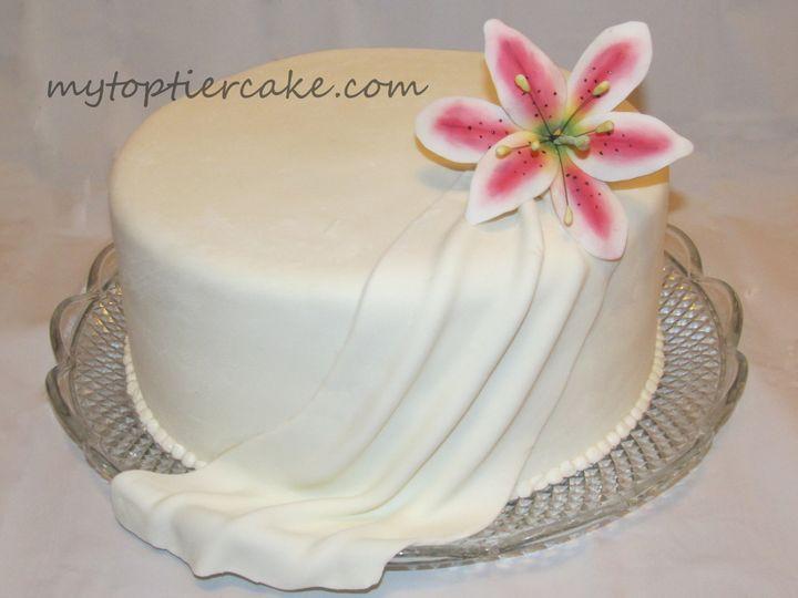 Tmx 1395111305083 Stargazer Lil Sauk Rapids wedding cake