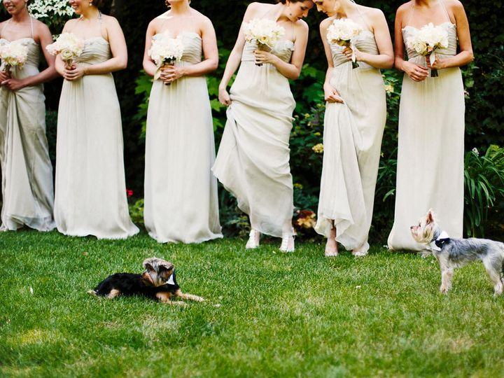Tmx 1534444531 5d7d38a171e3ba09 1534444529 D72b0a014214b78d 1534444505747 47 2016PortfolioFina Arlington, MA wedding photography