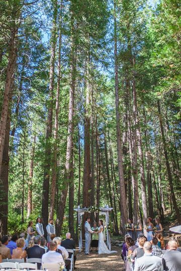 Towering forest ceremony Twenty Mile House mountain wedding Tahoe Reno