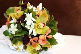 Nectar Custom Floral Designs