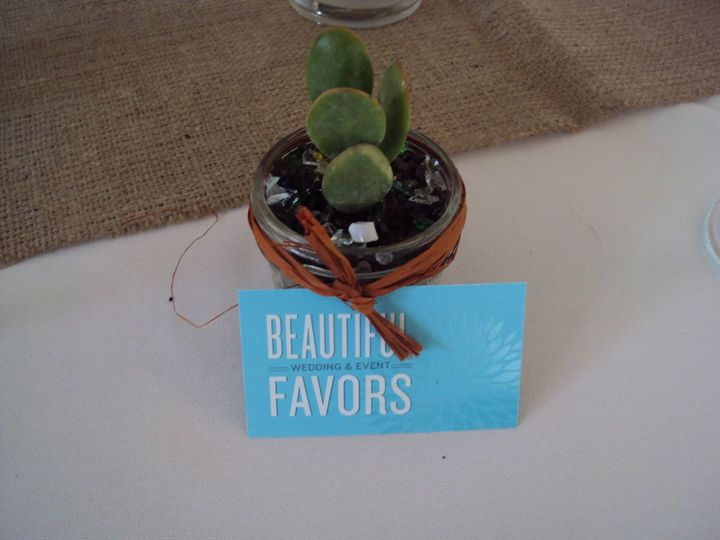 Beautiful and sustainable succulents!  Succulents are placed in up-cylced 4 ounce mason jars tied...
