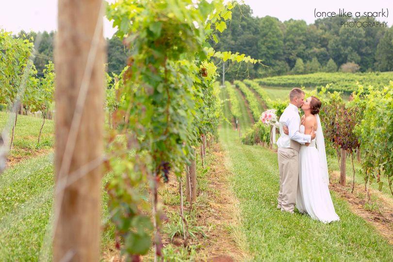 Newlyweds kissing in the vineyard