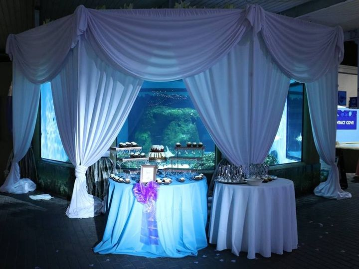 Tmx 51635742 2205575762828706 5057044036481712128 N 51 955606 1562600028 Bradenton, FL wedding eventproduction