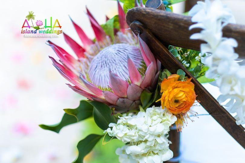King protea at wedding