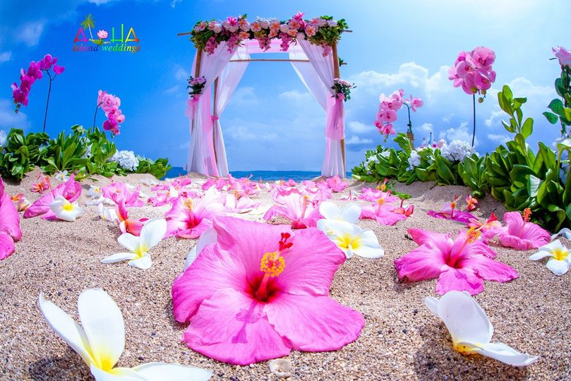 pink wedding archway for peng1 1 51 436806 159305092641595