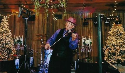 Steven Vance Electric Violins