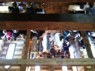 Tmx 1415987617761 Oak Lodge Wc Pittsburgh wedding dj