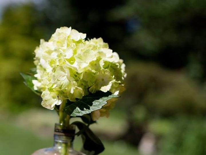 Tmx 1488487985551 15355675102096723176237754742852704979310748n New Albany, Kentucky wedding florist