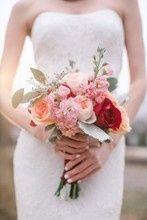 Tmx 1514149879195 220x2201451093845836 Royalbanquetamywurster09 Smal Hillsborough, North Carolina wedding florist