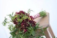 Tmx 1514149940758 220x2201458604540295 Dsc2872 Small Hillsborough, North Carolina wedding florist