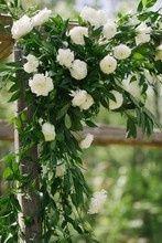Tmx 1514149945994 220x2201467585417154 20160423lvarachelcolinwed 236 Hillsborough, North Carolina wedding florist