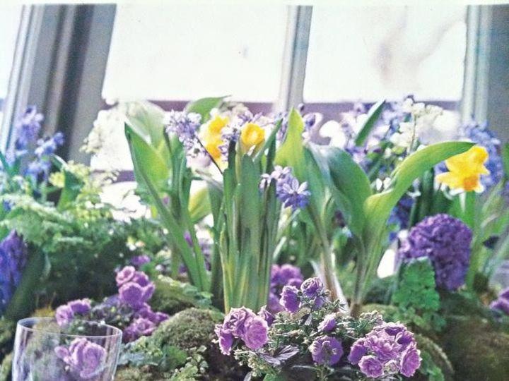 Tmx 1451577262004 109455803722652629449411838340216678026419n Rochester wedding florist