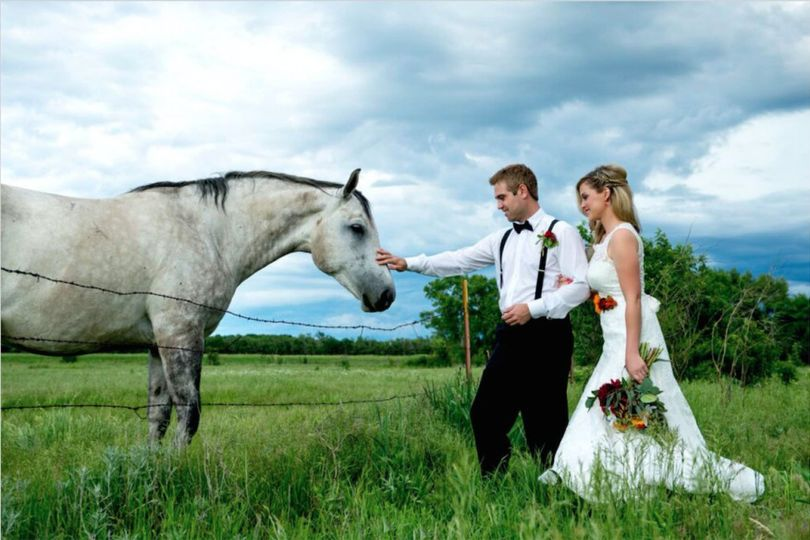 Newlyweds and a white horse