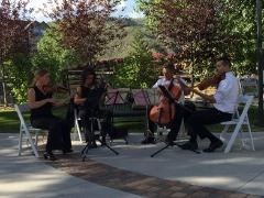 Pop Up Strings in Avon