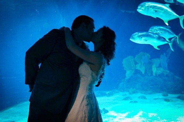 Kissing by the aquarium