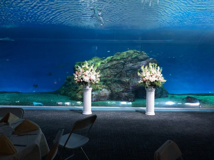 Tmx Baja Bay Wedding 1 51 57116 157903823997677 Tacoma, WA wedding venue