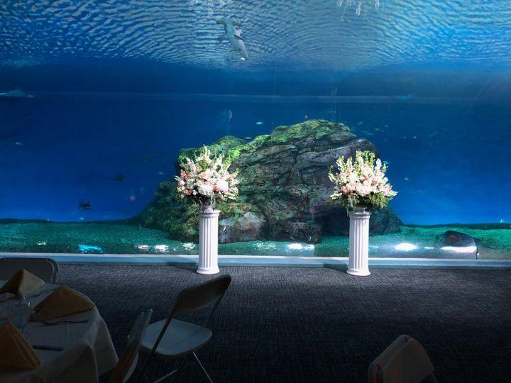 Tmx Baja Bay Wedding 1 51 57116 157903823997677 Tacoma, Washington wedding venue