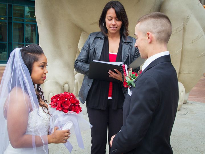 Tmx 1427159946238 At The Tiger Rochester, MI wedding officiant