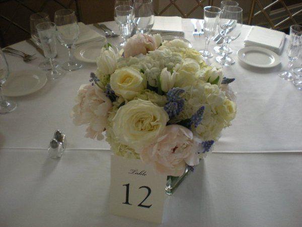 Tmx 1326998895550 Fallpictures005 Montclair wedding florist