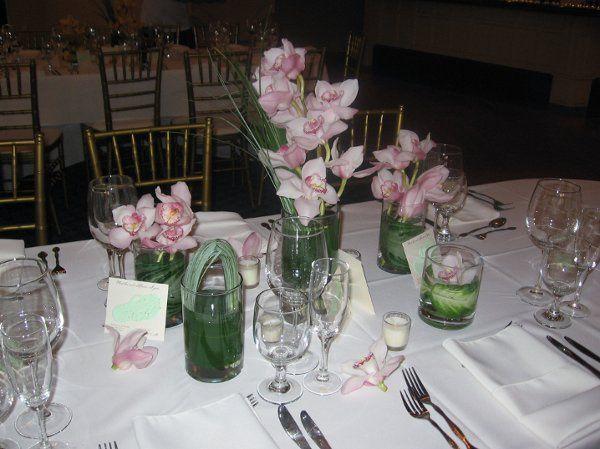 Tmx 1327000302816 112112 Montclair wedding florist