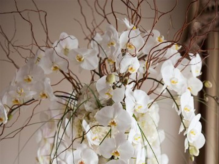 Tmx 1331143354370 DSC3696 Montclair wedding florist