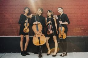 Colorado's Red Rock String Quartet