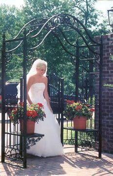 Bride entering the venue