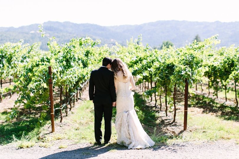 A stroll in the vineyard