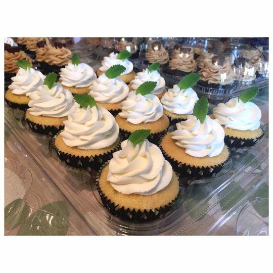 Twin.Vanilla cupcakes