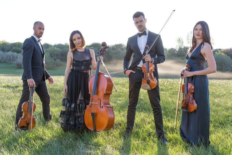 Weddingwire Musicians