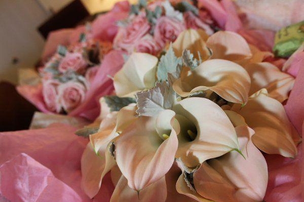 Tmx 1320080294786 IMG9747 Red Bank wedding videography
