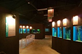 Medicine Park Aquarium & Natural Sciences Center