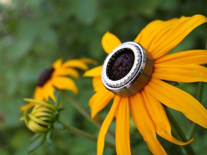 Tmx 1370056972780 Rings 2 Stevensville wedding planner