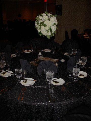 Tmx 1384238561107 Anniversar Stevensville wedding planner